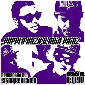 Purple Haze Acid Painz